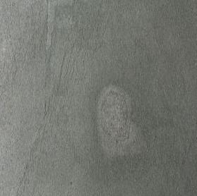 ARGENTO-1