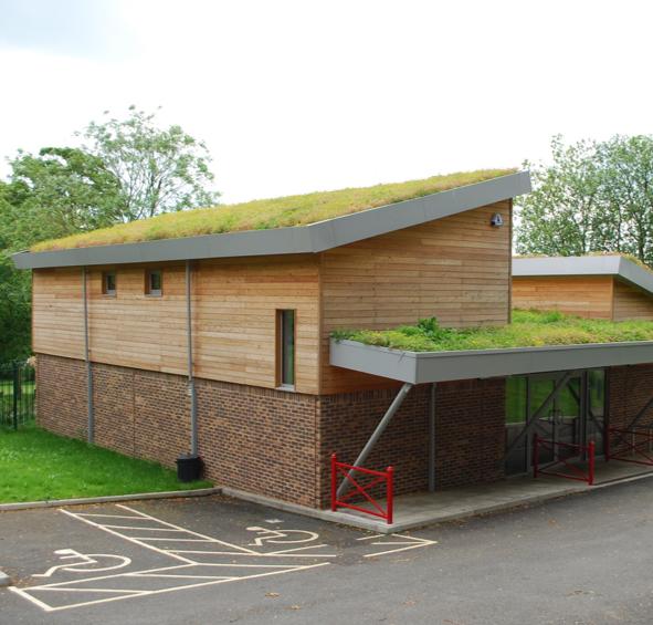 Скатная зеленая крыша от RAMDA.RU