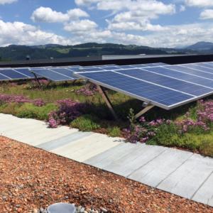 Зеленая крыша - солнечная энергия от RAMDA.RU